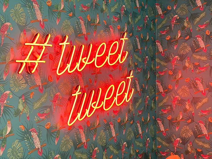 twitter lanza birdwatch